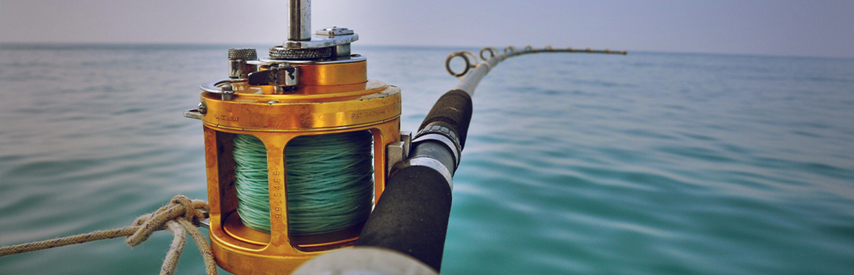 Fishing Reels  - Lew's